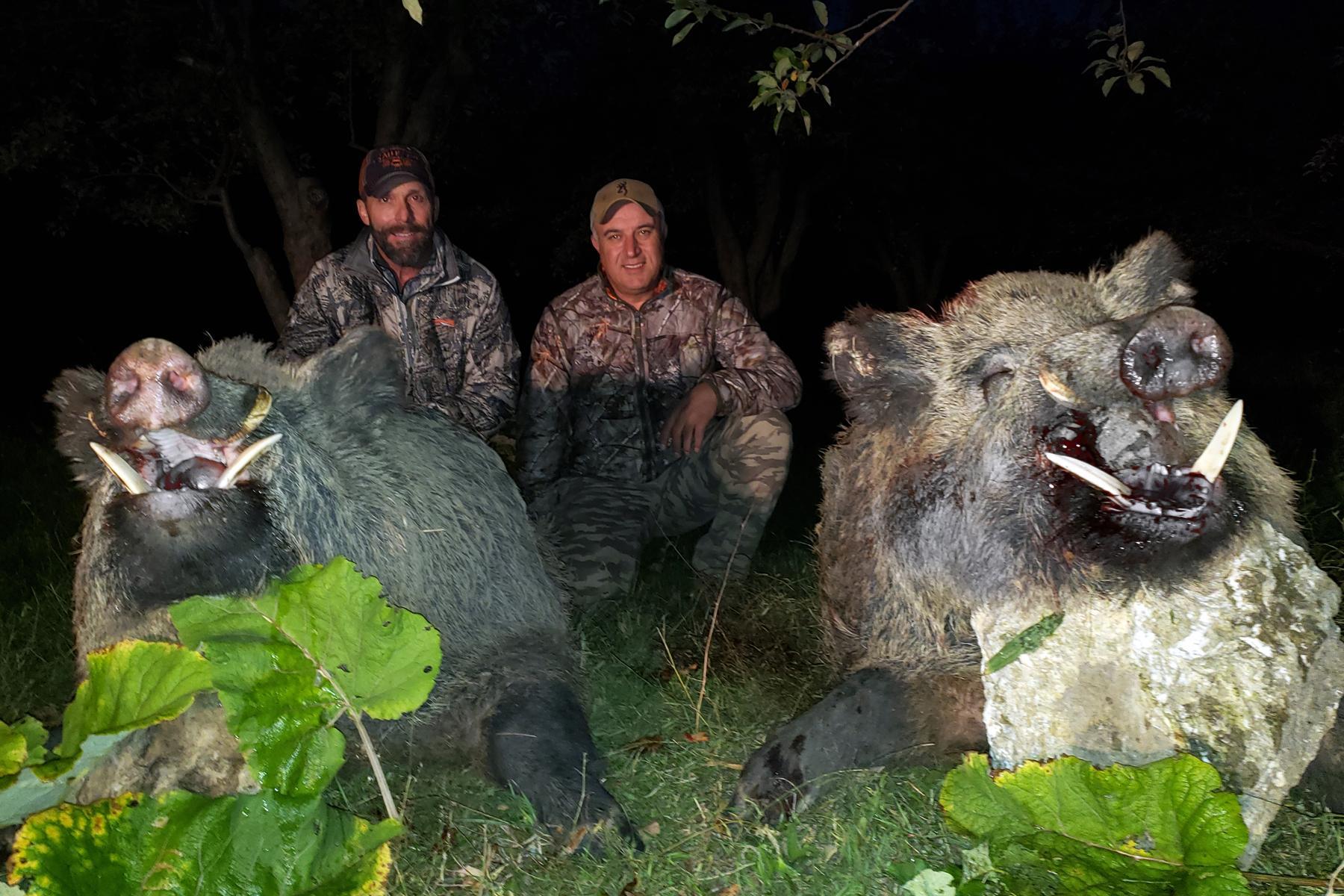 5 Days Stalking Wild Boar Hunting In Turkey Wild Boar Hunting In Turkey Optimum Hunting Optimum Hunting